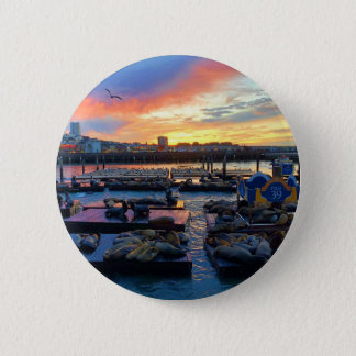 San Francisco Pier 39 Sea Lions #8 Pinback Button