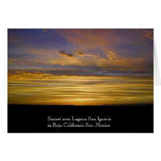 San Ignacio Lagoon Sunset Card