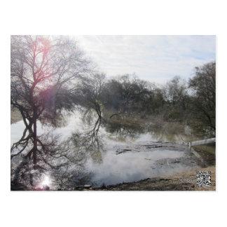 San Joaquin River, Lathrop, CA 1 Postcard