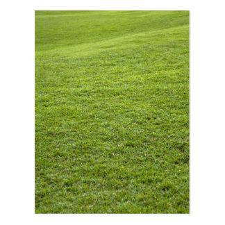 San Juan, Puerto Rico - Green grass is Postcard