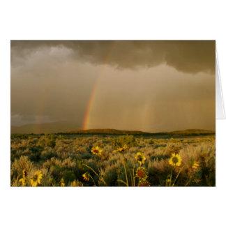 San Luis Valley Rainbow Card