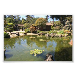 San Mateo Japanese Garden Photo Print