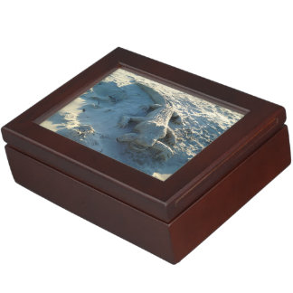 Sand art alligator holding human arm. keepsake box