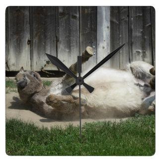 Sand Bathing Donkey Wall Clock