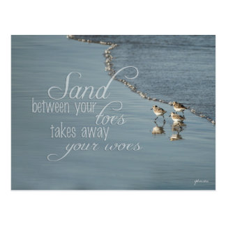 Sand Between Your Toes Beach Quote Postcard