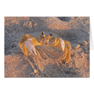 Sand Crab Card