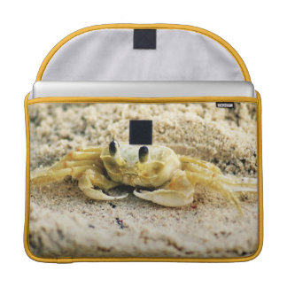 "Sand Crab, Curacao, Caribbean islands, Photo 15"" MacBook Pro Sleeve"