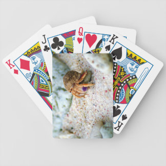 Sand Crab, Curacao, Caribbean islands, Photo Bicycle Playing Cards