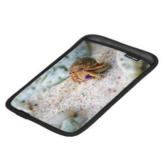 Sand Crab, Curacao, Caribbean islands, Photo iPad Mini Sleeve