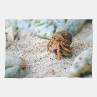 Sand Crab, Curacao, Caribbean islands, Photo Kitchen Towel