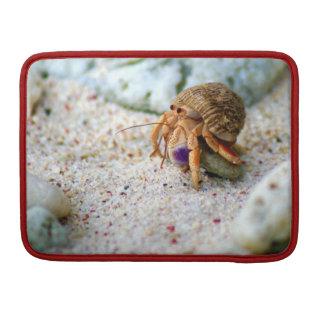 Sand Crab, Curacao, Caribbean islands, Photo MacBook Pro Sleeves