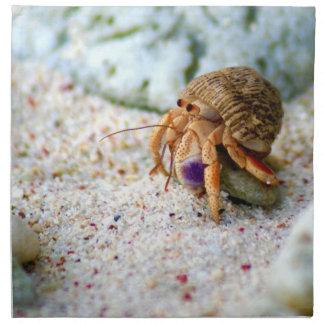 Sand Crab, Curacao, Caribbean islands, Photo Napkin
