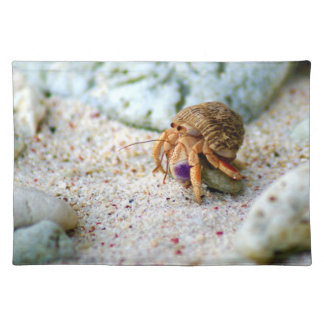 Sand Crab, Curacao, Caribbean islands, Photo Placemat