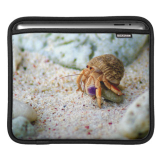Sand Crab, Curacao, Caribbean islands, Photo Sleeves For iPads