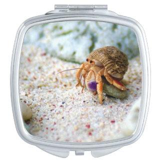 Sand Crab, Curacao, Caribbean islands, Photo Travel Mirror