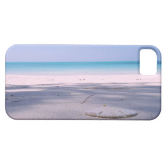 Sand Dollar Beach iPhone 5 Cases