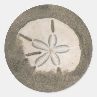 Sand dollar (Echinarachnius parma) Classic Round Sticker