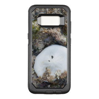 Sand Dollar in a Fiji Reef at Low Tide OtterBox Commuter Samsung Galaxy S8 Case