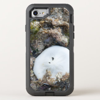 Sand Dollar in the Fiji Reef at Low Tide OtterBox Defender iPhone 8/7 Case