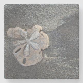 Sand dollar on sand stone beverage coaster