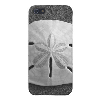 Sand Dollar Sea Shell Sand Beach iPhone Case Case For iPhone 5/5S