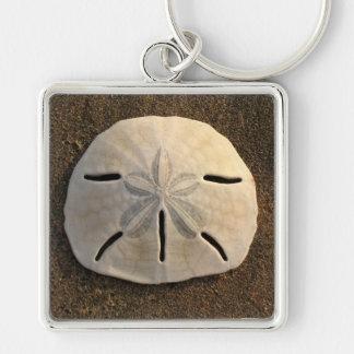 Sand Dollar Seashell Sand Beach Keychain