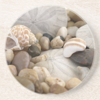 Sand Dollar Shells and Pebbles Coaster
