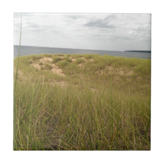Sand dune ceramic tile