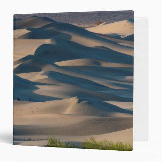 Sand dune landscape, California Binder