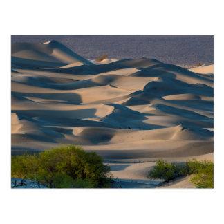 Sand dune landscape, California Postcard