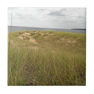 Sand dune tile