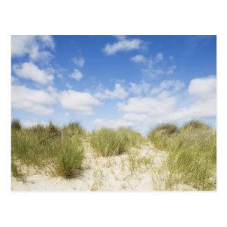 Sand dunes postcard
