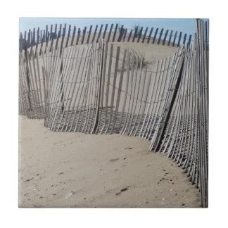 Sand Fence on Virginia Beach Tile