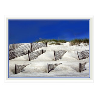 Sand Fences Postcard