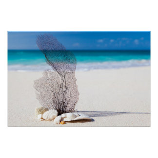 Sand Sea Corals Archival Heavyweight Paper (Matte) Poster
