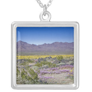 Sand Verbena & Desert Gold at Amboy Crater, CA, Silver Plated Necklace