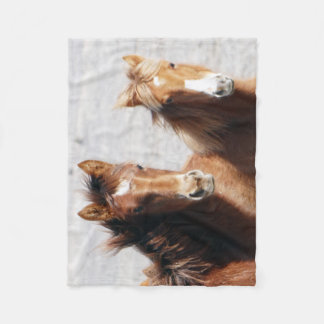 Sand Wash Basin Foals Fleece Blanket