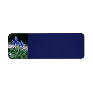 Sandbar Bluebonnets Return Address Label