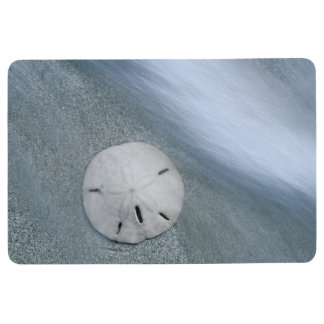 Sanddollar on Beach | Sanibel Island, Florida Floor Mat