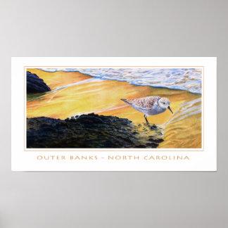 Sanderling at Sunset - Outer Banks Poster
