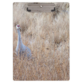 Sandhill Crane Birds Wildlife Animals Clipboards