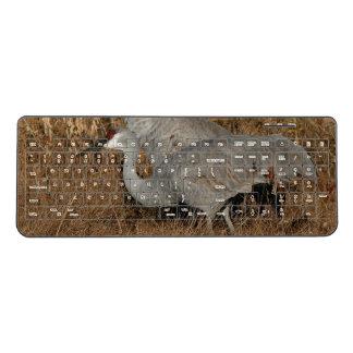 Sandhill Crane Birds Wildlife Wireless Keyboard
