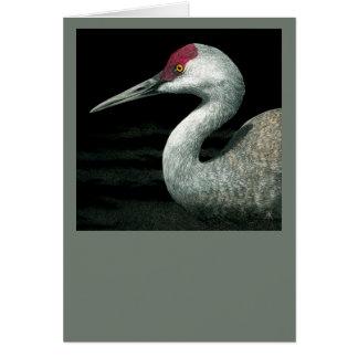 "Sandhill Crane Card - ""Grassland Grace"""
