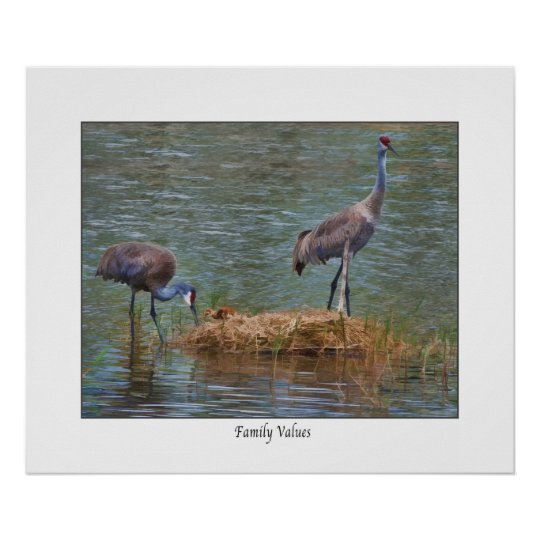 "Sandhill Crane "" Family Values""  Print"