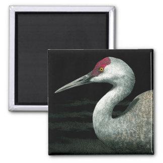 "Sandhill Crane Magnet - ""Grassland Grace"""