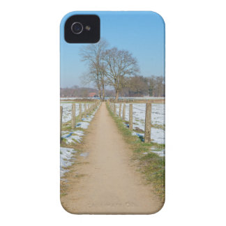 Sandpath between snowy meadows in dutch winter iPhone 4 covers