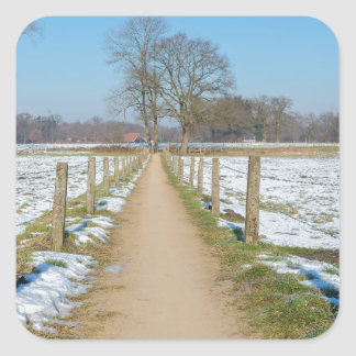 Sandpath between snowy meadows in dutch winter square sticker
