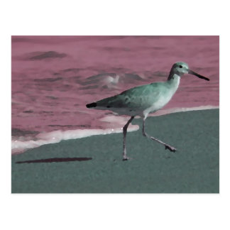 sandpiper abstract red green on beach postcard