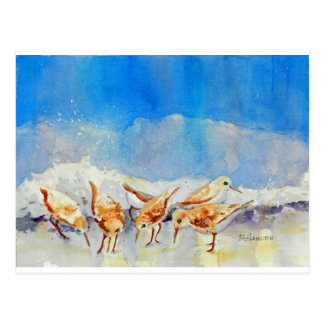 Sandpipers, Beach, Waves, Ocean, Watercolor Postcard
