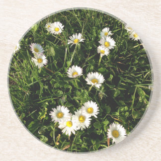 Sandstone Drink Coaster with wild flowers picture